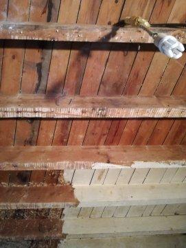 il maestoso soffitto di legno